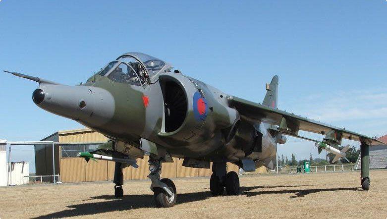 Ashburton Harrier.jpg